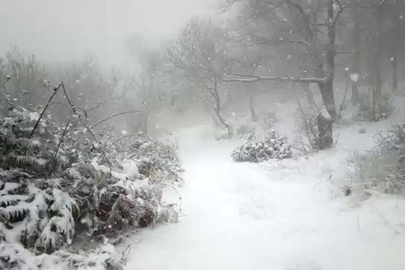 Νέα χιονόπτωση στα ορεινά των Τρικάλων