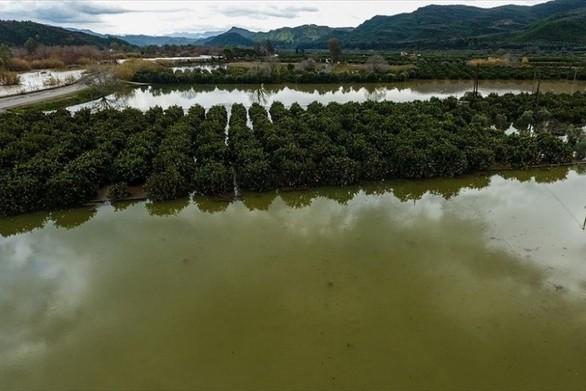 Ηλεία: Βλέπουν τον ποταμό να καταπίνει τα χωράφια και τις περιουσίες τους (pics)