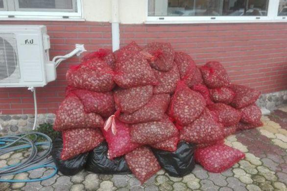 Πόρτο Λάγος: Σύλληψη για κατοχή – μεταφορά οστράκων ακατάλληλων για κατανάλωση