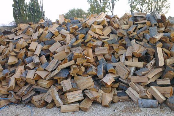 Αχαΐα - Αφαίρεσαν 20 τόνους ξύλα σεχωριό του Αιγίου