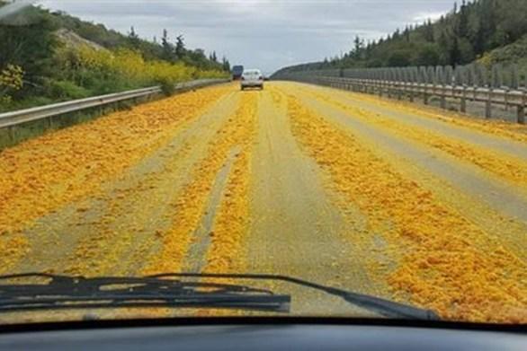 """Δρόμος στην Κύπρο, """"πλημμύρισε"""" από... πορτοκάλια (φωτο)"""