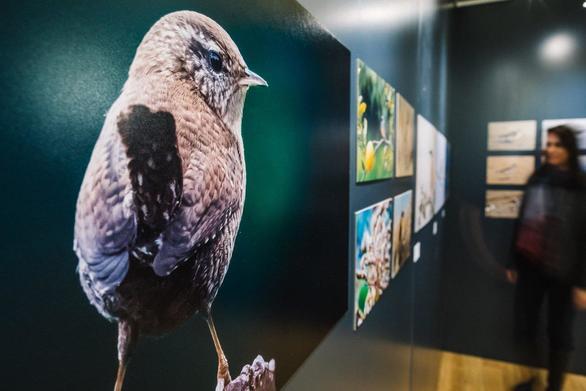Πλήθος κόσμου στα εγκαίνια της έκθεσης φωτογραφίας για τον υδροβιότοπο της Αλυκής Αιγίου (φωτο)