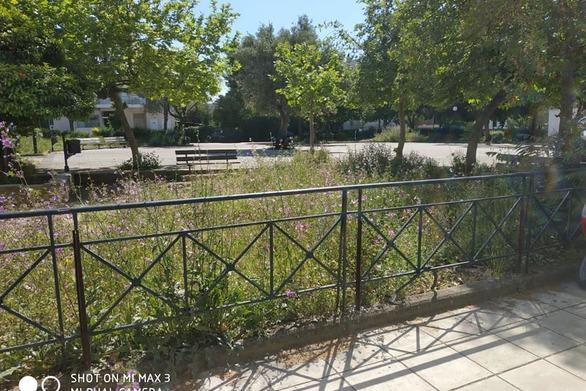 Πάτρα: Η πλατεία Μενελάου που θυμίζει... Τροία (φωτο)