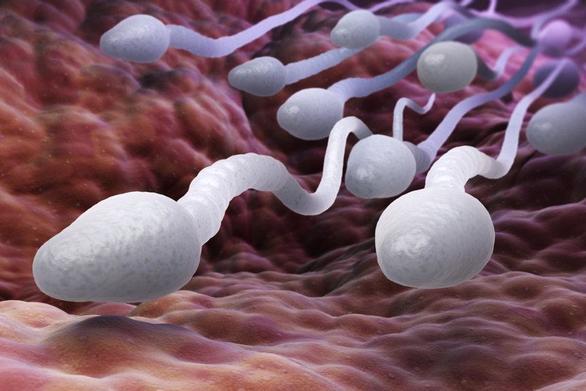 Ποιοι έχουν τη χειρότερη ποιότητα σπέρματος στην Ευρώπη