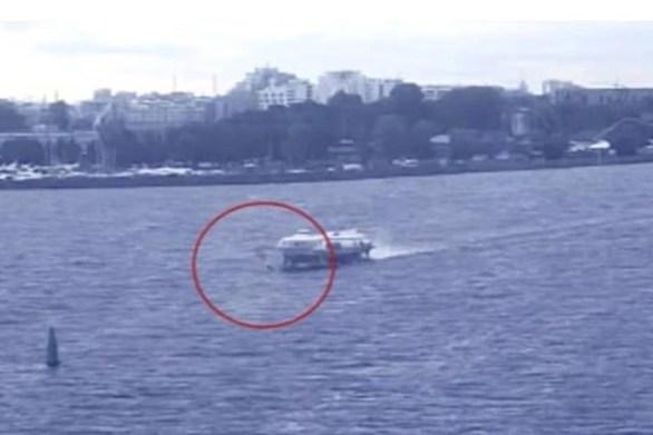 """Νεαρός σέρφερ βρήκε τραγικό θάνατο, όταν παρασύρθηκε από """"ιπτάμενο δελφίνι"""" (video)"""