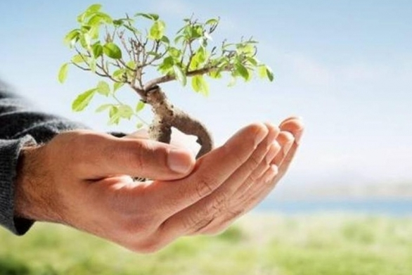Το ΓΕΩΤΕΕ Πελοποννήσου για την Παγκόσμια Ημέρα Περιβάλλοντος