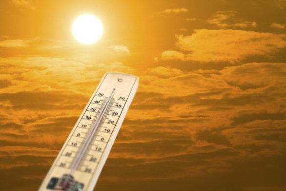 Δυτική Ελλάδα: H θερμοκρασία έφτασε τους 37 βαθμούς στη Γαβαλού