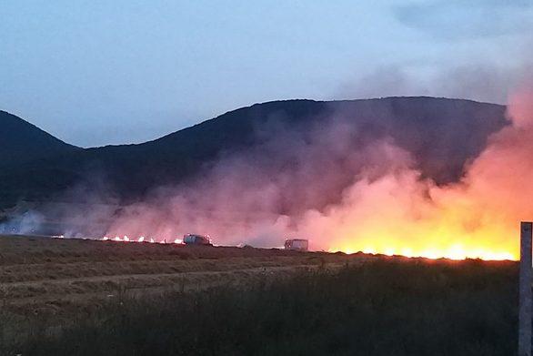 Ξέσπασε φωτιά σε χωράφι από πυροτεχνήματα γάμου (φωτο)