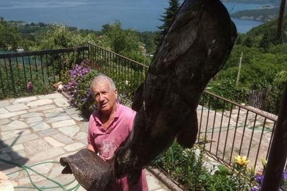 Καρδίτσα: Ψάρεψε γουλιανό 70 κιλών από τη λίμνη Πλαστήρα (φωτο)