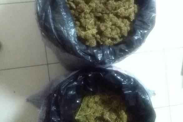 Εντοπίστηκαν ακόμη 13 κιλά κάνναβης για την υπόθεση σύλληψης έξι διακινητών ναρκωτικών