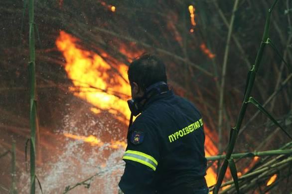 Δυτική Αχαΐα - Μεγάλη φωτιά ξέσπασε στη θέση Μπούκα
