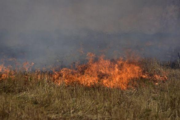 Αχαΐα - Φωτιά εκδηλώθηκε στην Κερύνεια