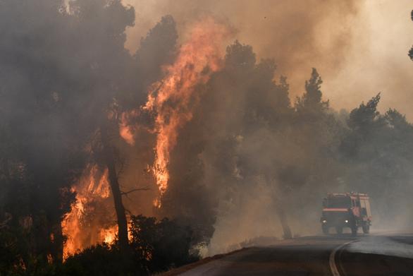 Ανεξέλεγκτη η φωτιά στην Εύβοια - Επιχειρούν περισσότεροι από 220 πυροσβέστες (φωτο)