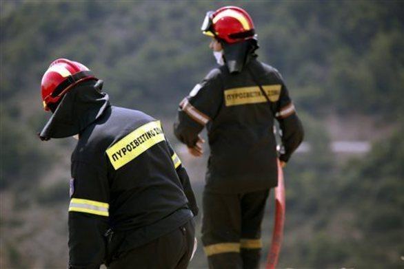 Αχαΐα: Πυρκαγιά σε δασώδη έκταση στα Καλάβρυτα
