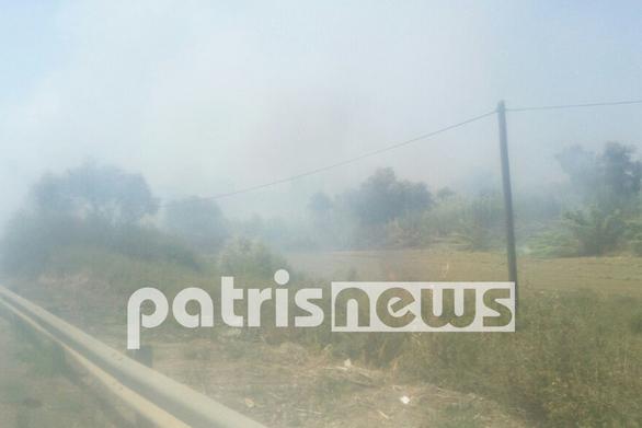 Ηλεία: Τρεις γυναίκες στο νοσοκομείο από τη φωτιά στη Βάρδα