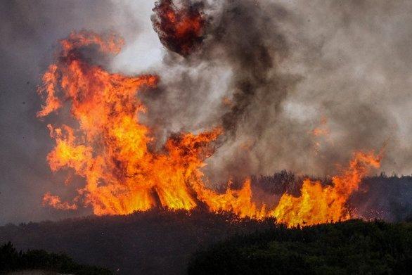 Ηλεία: Προσήχθη ύποπτος για τη φωτιά στη Βάρδα