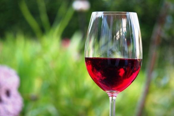Το κόκκινο κρασί κάνει καλό στο έντερο