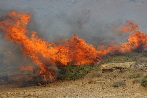 Αγρίνιο - Μεγάλη φωτιά μεταξύ Σκουτεράς και Σκουτεσιάδας (φωτο)