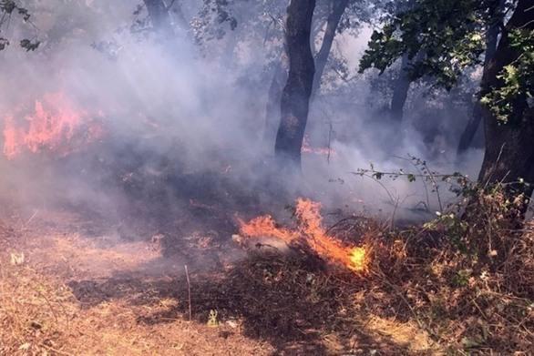 Υψηλός για σήμερα ο κίνδυνος εκδήλωσης πυρκαγιάς