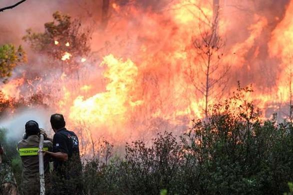 Υψηλός κίνδυνος πυρκαγιάς σήμερα στην Αχαΐα και σε περιοχές της Ηλείας