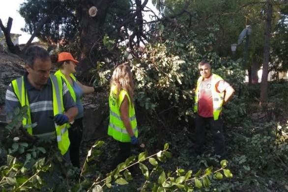 Πάτρα: Ο Δήμος προχωρά σε εργασίες στην Πλατεία Ελευθερίας