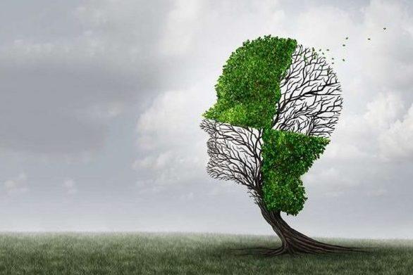 Αλτσχάιμερ - Το διατροφικό συστατικό που νικά τη γήρανση του εγκεφάλου