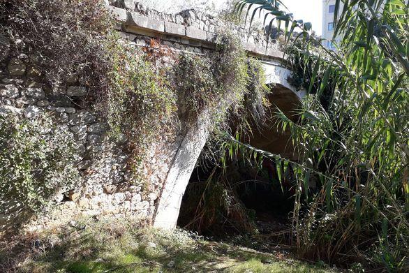 Το μονότοξο γεφύρι της Πάτρας κρυμμένο πίσω από τις καλαμιές (φωτο)