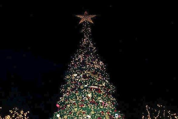 Φωταγωγείται το πρώτο χριστουγεννιάτικο δέντρο στην Ελλάδα