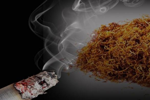 Ηλεία: Kατασχέθηκε συσκευασία λαθραίου καπνού από τις αρχές