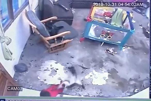Γάτα ορμά για να σώσει μωρό, πριν πέσει από τη σκάλα (video)