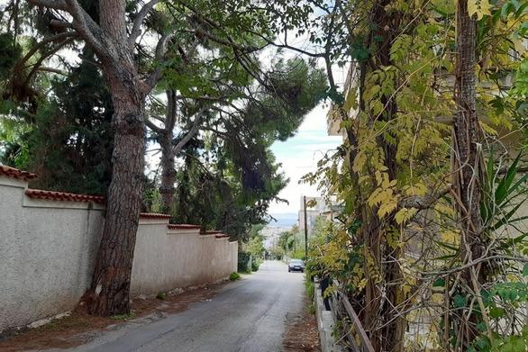 Φθινοπωρινή εξόρμηση σε ένα… γλυκό μέρος της Πάτρας (pics)