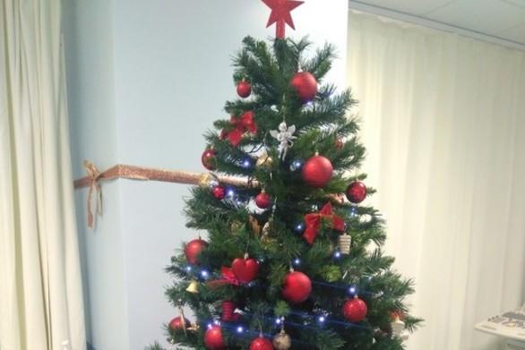 Πάτρα: Στολίστηκε το πρώτο Χριστουγεννιάτικο δέντρο στο νοσοκομείο Άγιος Ανδρέας