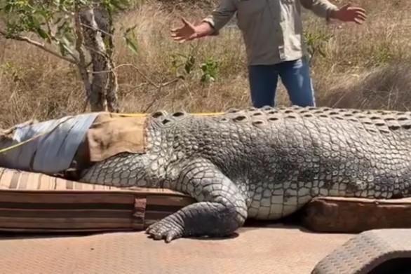 Αυστραλός έπιασε γιγαντιαίο κροκόδειλο 5,1 μέτρων