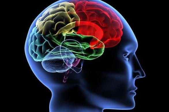 Νέο σύστημα τεχνητής νοημοσύνης κάνει διαγνώσεις-εξπρές καρκίνου του εγκεφάλου