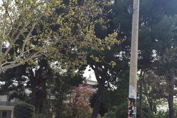 Πάτρα: Πήραν τα φώτα και έμεινε στο σκοτάδι η κεντρική πλατεία της Αρόης