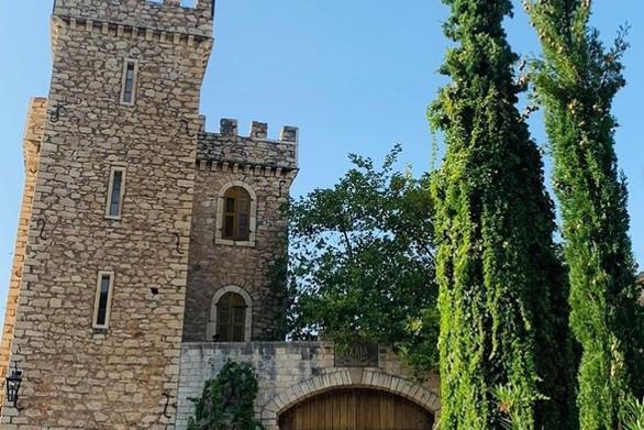 Bόλτα στο οινόκαστρο της Achaia Clauss (φωτο)