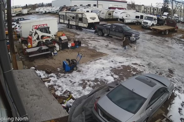 Γυναίκα επιχείρησε να βγάλει το σκύλο της βόλτα σε παγωμένο δρόμο (video)