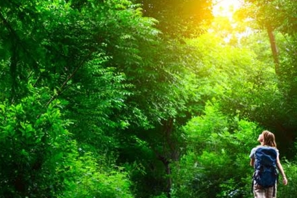 Η δραστηριότητα στη φύση που έχει ευεργετικές ιδιότητες στο σώμα και το πνεύμα