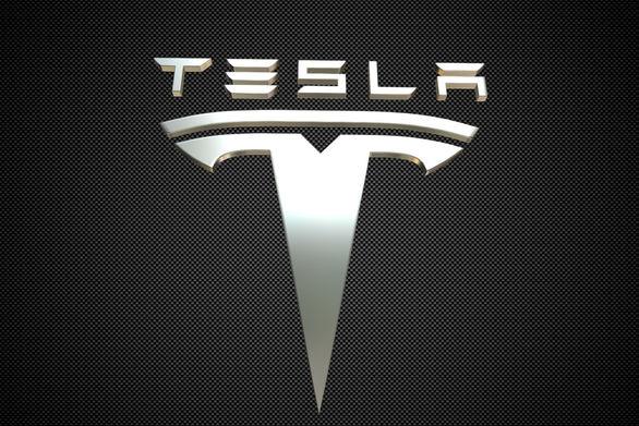 Η Tesla «μετακομίζει» μυρμηγκοφωλιές από οικόπεδο, όπου θα χτίσει νέο εργοστάσιο