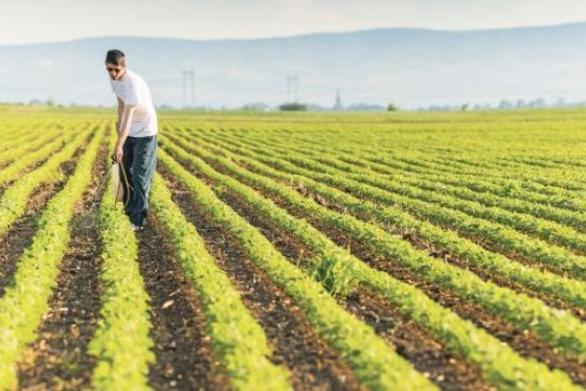 Δουλειές στα χωράφια σε χιλιάδες πρόσφυγες και μετανάστες