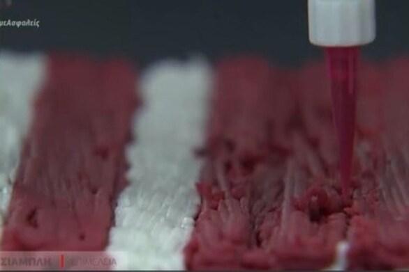 Ισραήλ - Έφτιαξαν μπριζόλα μέσω 3D εκτυπωτή (video)