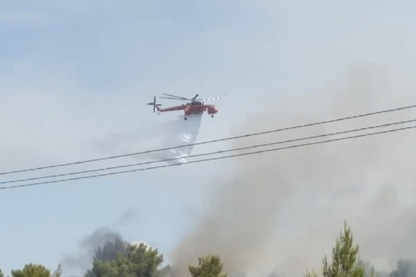 Ηλεία: Εντοπίστηκε νεκρός άνδρας από τους πυροσβέστες στην πυρκαγιά της Φιγαλείας