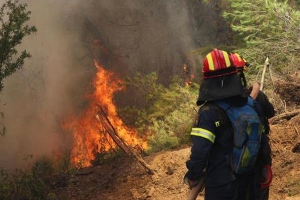 Ηλεία: Μεγάλη φωτιά σε δασική έκταση στην Αμαλιάδα