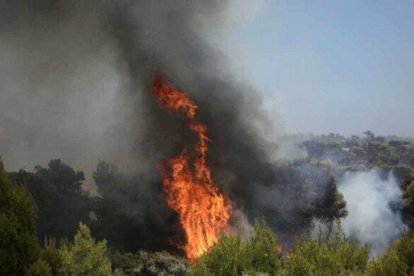 Νέα φωτιά ξέσπασε στη Δυτική Αχαΐα