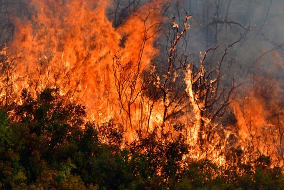 Αχαΐα: Ξέσπασε φωτιά στο Χαϊκάλι