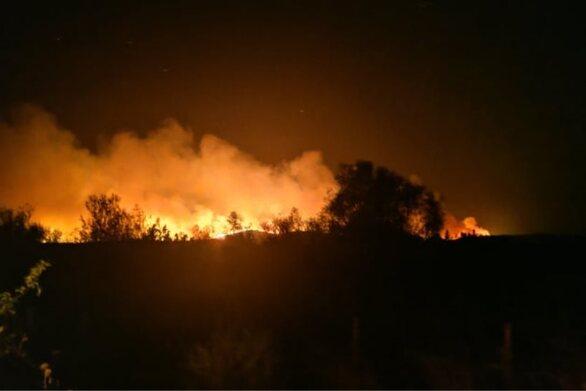 Φωτιά στην Αλεξανδρούπολη - Ξεκίνησαν ρίψεις τα εναέρια μέσα