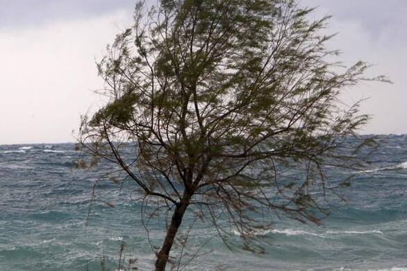 """Δυτική Αχαΐα - Κακοκαιρία """"Ιανός"""": Οι ριπές του ανέμου ξεπέρασαν τα 80 χλμ/ώρα"""