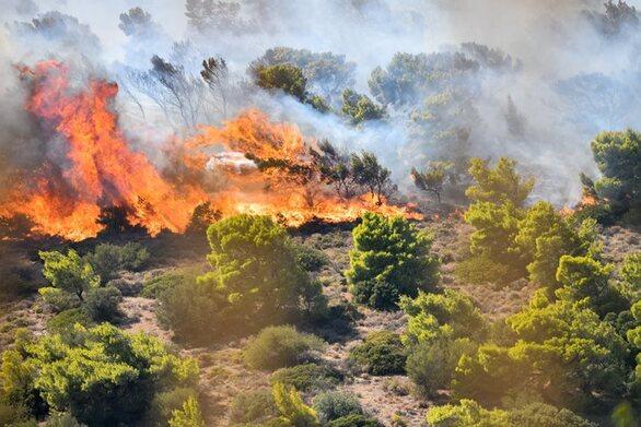 Φωτιά στον Υμηττό - Συναγερμός στην Πυροσβεστική