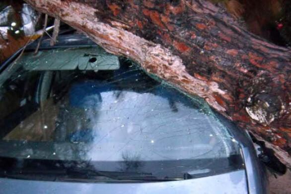 Κακοκαιρία με προβλήματα στην Πάτρα - Έπεσε δέντρο πάνω σε Ι.Χ. στο Ρίο