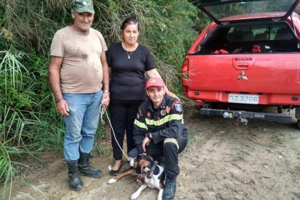 Δυτική Ελλάδα: Σώθηκε κυνηγόσκυλο από χαράδρα 100 μέτρων με τη συμβολή της ΕΜΑΚ
